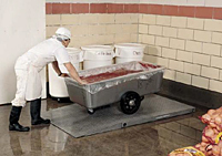 ProDec Stainless Steel DSLS Series Low Profile Floor Scale